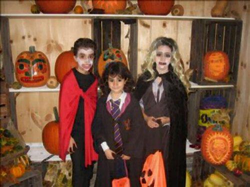 The Autumn Festival—Halloween or Guy Fawkes Night? | Magi Mike's Blog